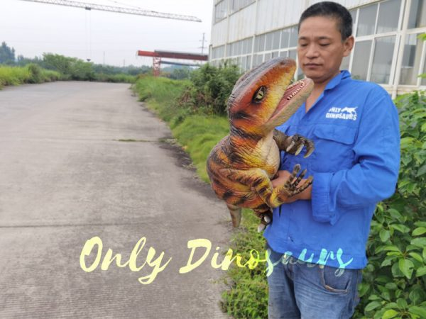 Stage-Show-Life-Size-Handheld-Velociraptor5