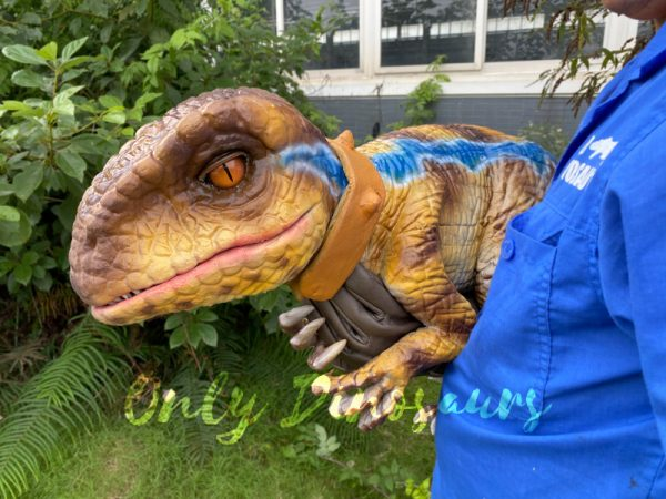 Streak-Pattern-Velociraptor-Baby-Puppet-for-sale1
