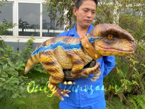 Streak-Pattern-Velociraptor-Baby-Puppet-for-sale2