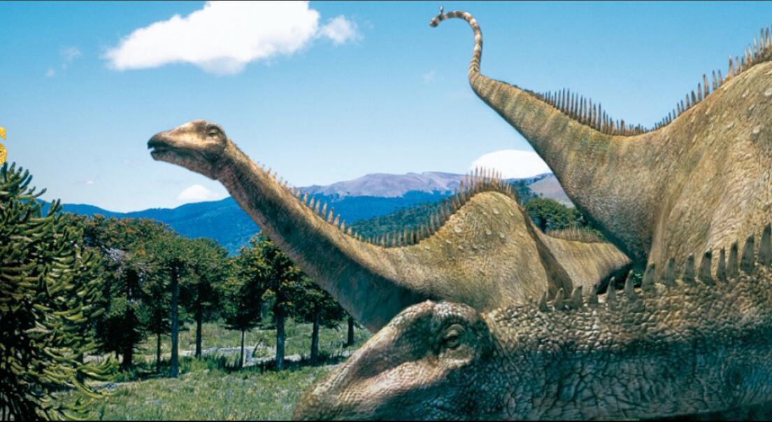 Authoritative Dinosaur Knowledge Websites cover·