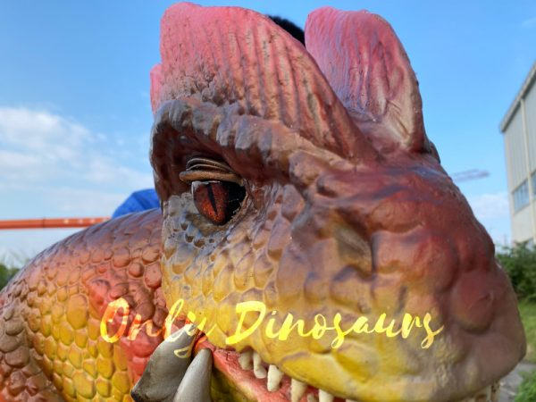 Fascinating-Dilophosaurus-Dino-Puppet-for-Woman2