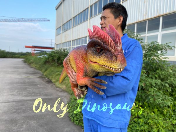 Fascinating-Dilophosaurus-Dino-Puppet-for-Woman4
