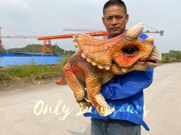 Lifelike-Orange-Triceratops-Baby-Dino-Puppet4