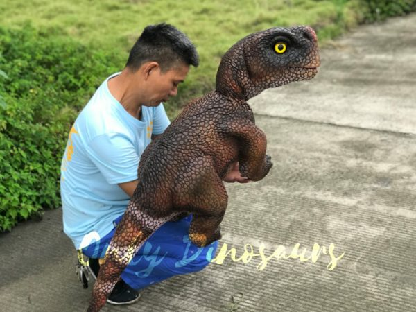 Lively-baby-apatosaurus-puppet-for-kids4