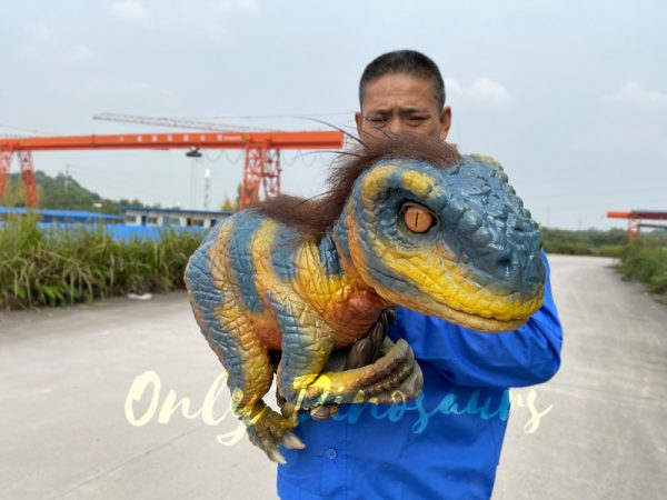 Verisimilar-baby-raptor-puppet-with-brown-hair2