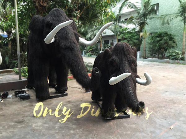 Emulational-Mammoth-Family10.JPG