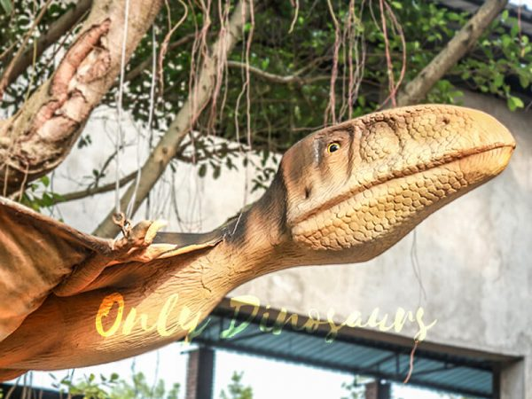 Realistic-Animatronic-Pterosaur-for-Park6