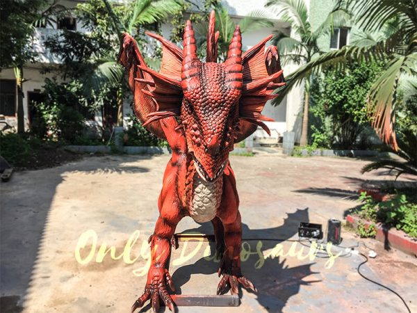 Vivid-Mysterious-Dragon1