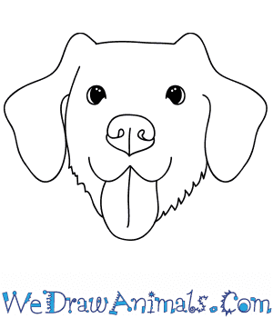 drawing-website-for-kids-We-Draw-Animals