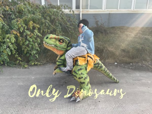T-Rex-Baby-Dinosaur-Costume-22-2-