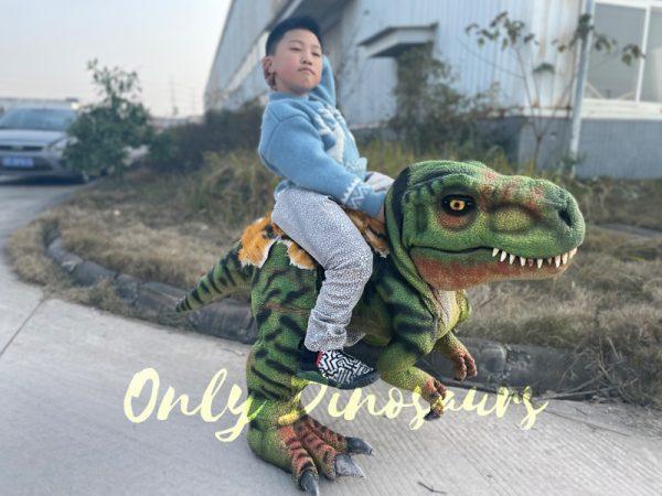 T-Rex-Baby-Dinosaur-Costume4-4