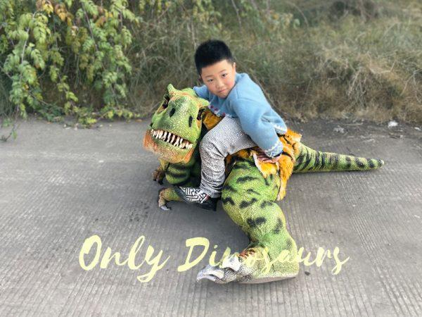 T-Rex-Baby-Dinosaur-Costume5-5