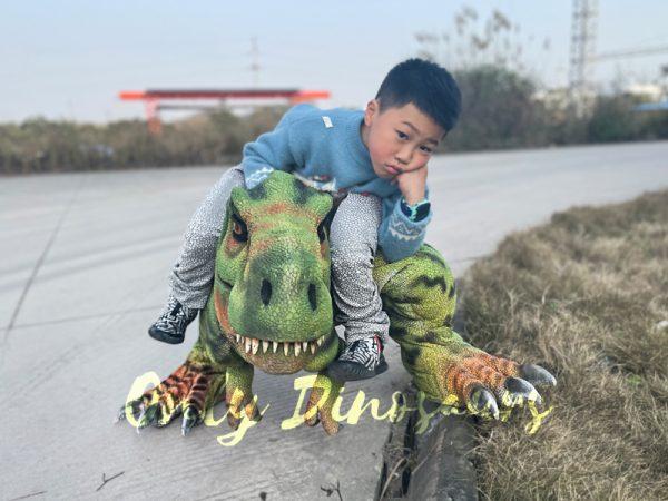 T-Rex-Baby-Dinosaur-Costume6-6
