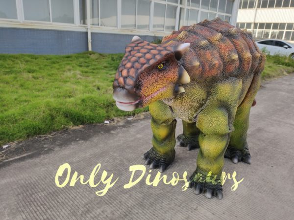 Vivid-Single-man-Ankylosaurus-Costume-for-Actor6-1