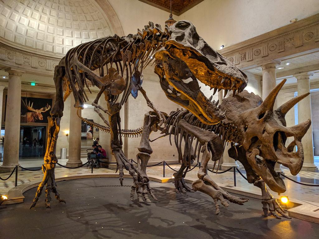 20-16-Best-Dinosaur-Exhibits-in-America-2021-los-angeles-museum-1
