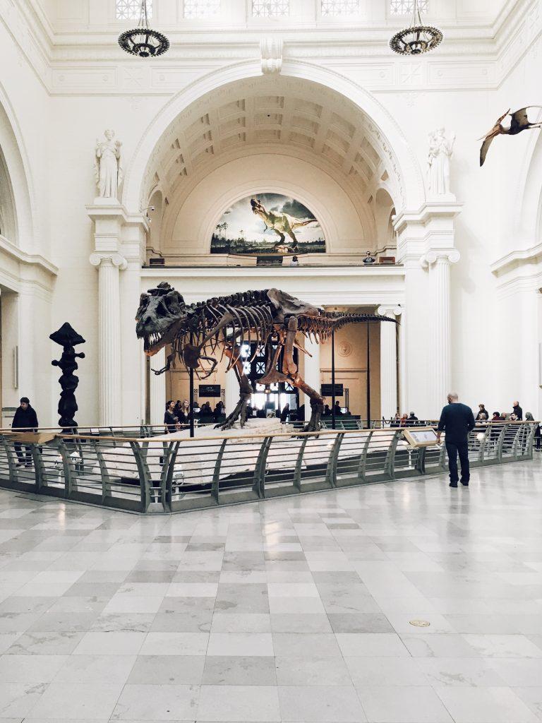 2116-Best-Dinosaur-Exhibits-in-America-2021-coast-to-coast-dinosaur-exhibits-in-america-1