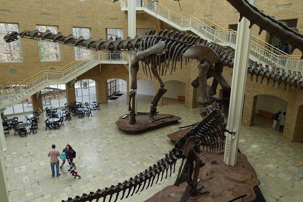 7-16-Best-Dinosaur-Exhibits-in-America-2021-fernbank-museum