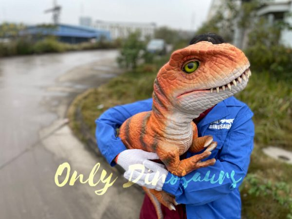 Adorable-Baby-T-rex-Puppet-with-False-Arm-4
