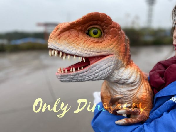 Adorable-Baby-T-rex-Puppet-with-False-Arm-6