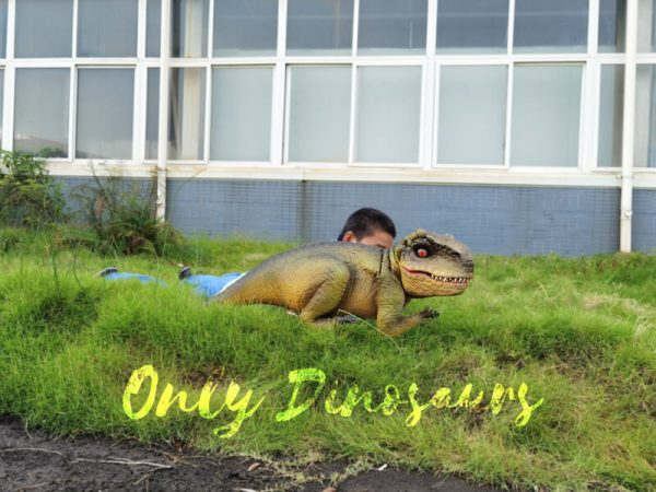 Approachable-Baby-Tyrannosaurus-from-Jurassic-World-4