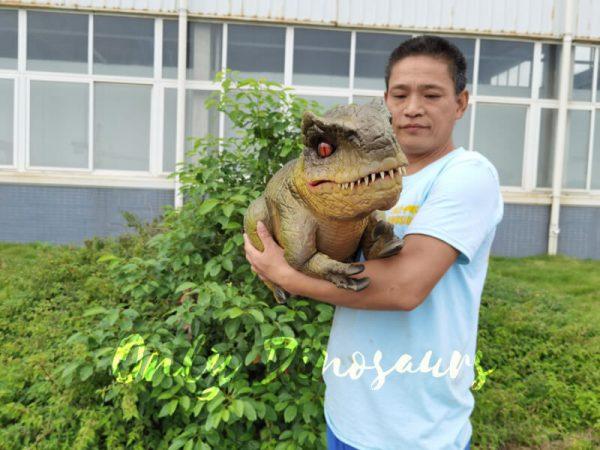 Approachable-Baby-Tyrannosaurus-from-Jurassic-World-6