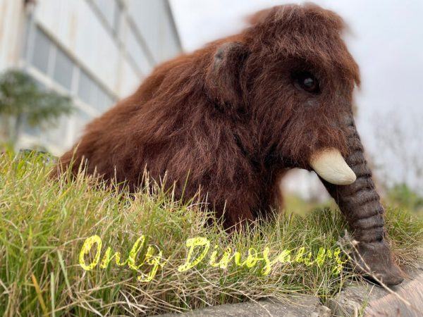 Brown-Baby-Mammoth-Puppet-with-Cute-Appearance-4