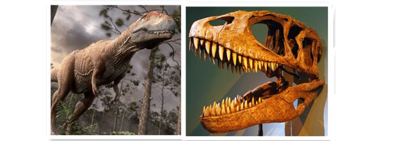 Carcharodontosaurus-1