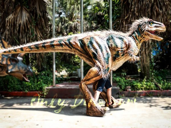 Dinosaur-facts-for-kids-Birds-evolved-from-dinosaurs
