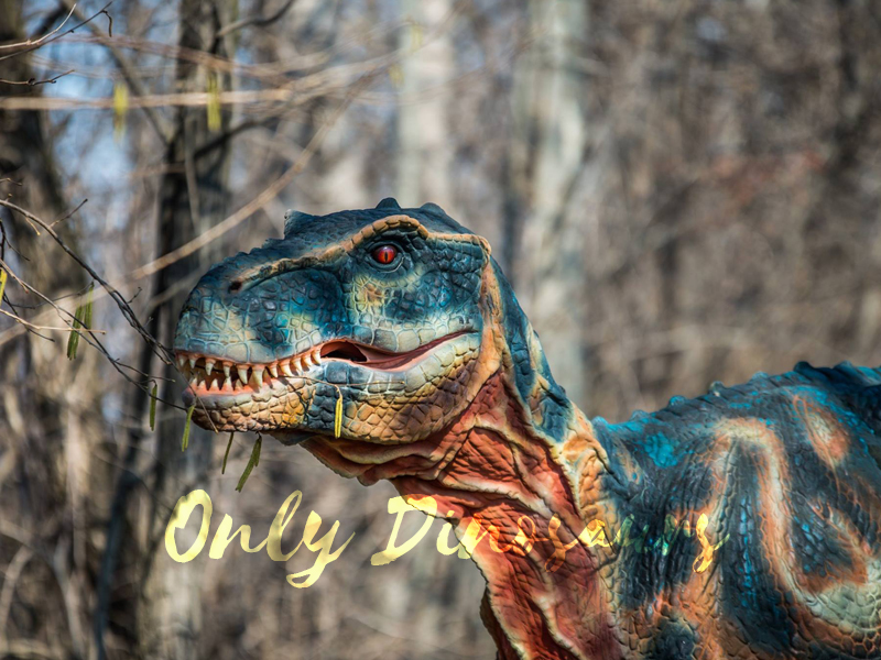 Dinosaur-facts-for-kids-Dinosaurs-can-live-up-to-300-years