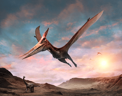 Dinosaur-facts-for-kids-Dinosaurs-met-nimals-that-were-more-dominant-than-them-on-earth