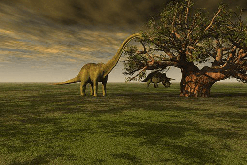 Dinosaur-facts-for-kids-The-longest-dinosaur-could-be-as-long-as-half-of-a-football-pitch