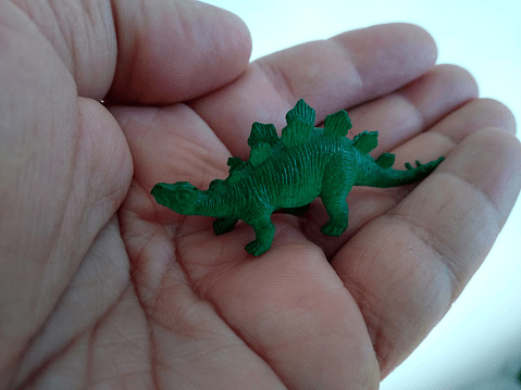 Dinosaur-facts-for-kids-You-can-hold-a-small-dinosaur-in-your-hand