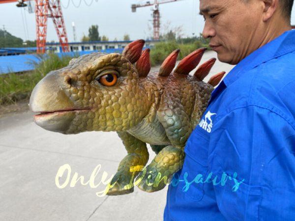 Funny-hand-held-baby-stegosaurus-with-vivid-color-3