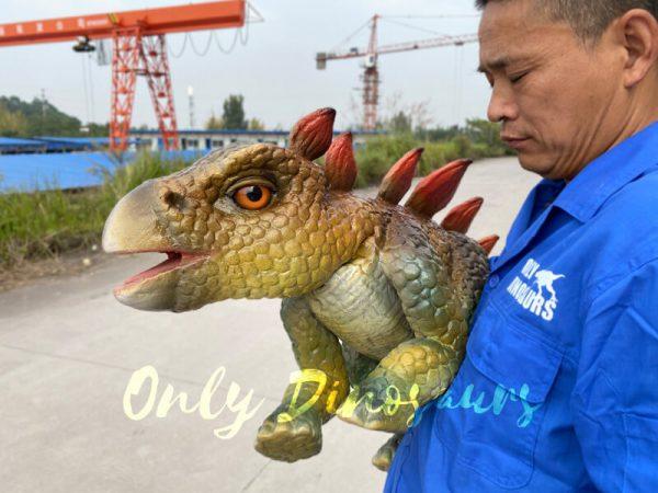 Funny-hand-held-baby-stegosaurus-with-vivid-color-4