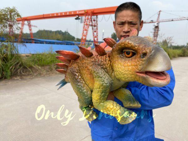 Funny-hand-held-baby-stegosaurus-with-vivid-color-5