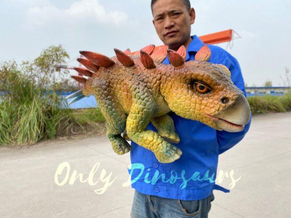 Funny-hand-held-baby-stegosaurus-with-vivid-color-7