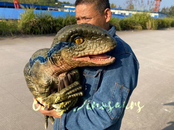 Lifelike-Raptor-Hand-Puppet-for-Sale-1