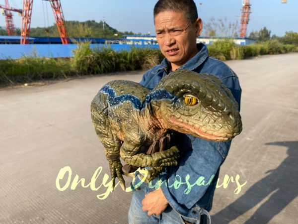 Lifelike-Raptor-Hand-Puppet-for-Sale-2