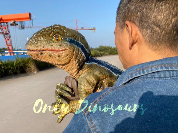 Lifelike-Raptor-Hand-Puppet-for-Sale-5