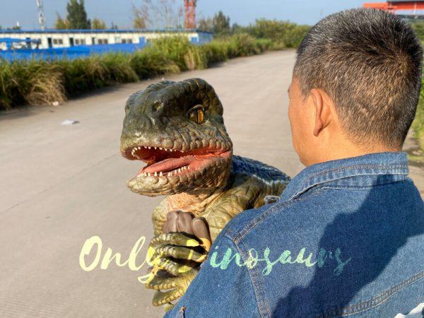 Lifelike-Raptor-Hand-Puppet-for-Sale-6