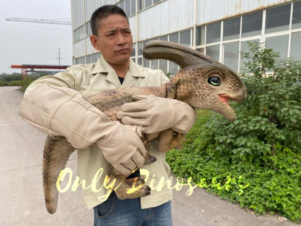 Loveable-Baby-Parasaurolophus-with-False-Arm-2