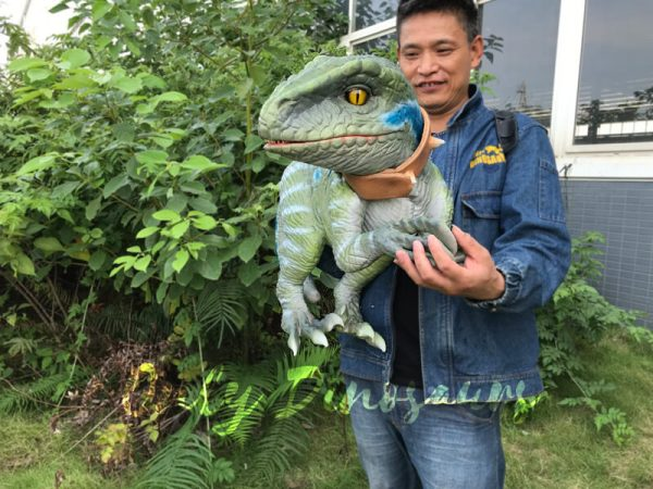 Realistic-Raptor-Hand-Puppet-with-Beautiful-Eyes-2