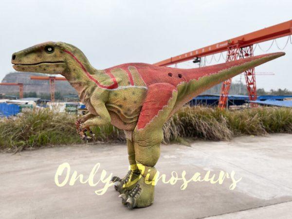 Realistitic-Adult-Velociraptor-Costume-with-Hidden-Legs3