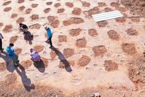 The-Best-Places-to-See-Dinosaur-Footprints-in-2021