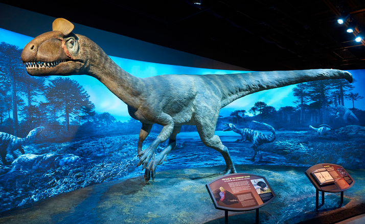Top-10-traveling-Exhibits-You-Should-Visit-in-2021-Antarctic-Dinosaurs