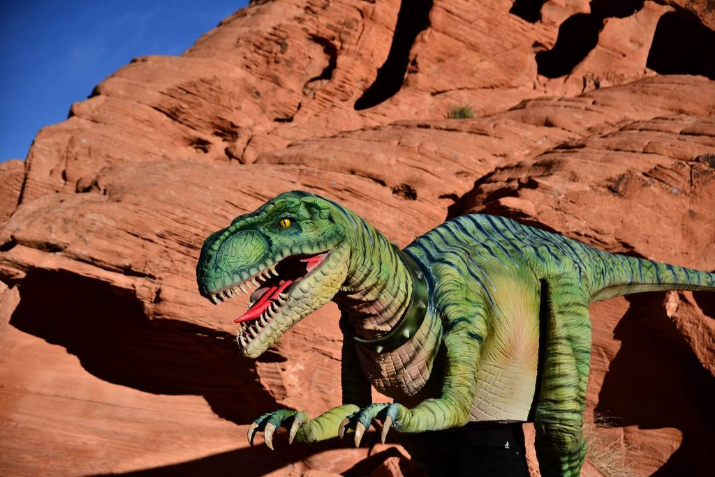 Top-25-Dinosaur-Facts-for-Kids-1