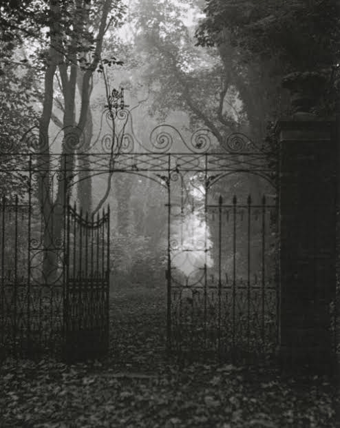 What-are-some-good-haunted-house-ideas-fog-up-the-place