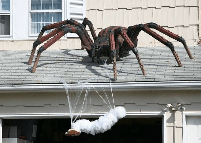 What-are-some-good-haunted-house-ideas-get-a-huge-spider