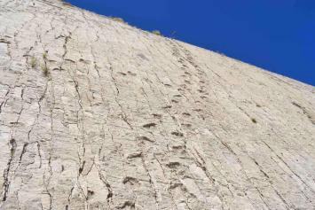 Where-can-I-see-dinosaur-footprintsParque-Cretacico-Cal-Orcko-Bolivia
