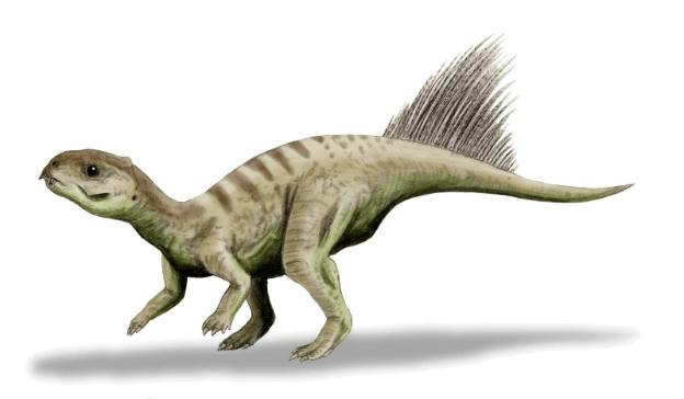 15-Cute-Dinosaurs-Thatll-Melt-Your-Heart-Make-You-Laugh-Chaoyangsaurus